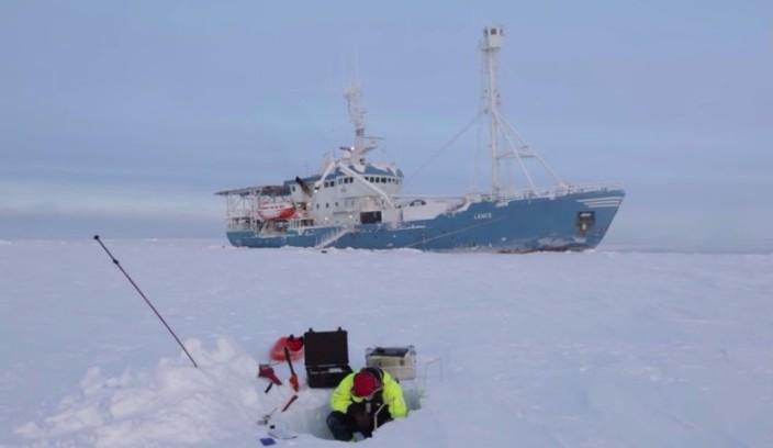 Будни арктической экспедиции