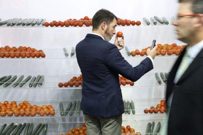 Как вернуть помидорам былой вкус